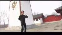狂龙九式1 金蛇乱舞【实战】
