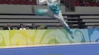 2015年全国武术套路锦标赛 女子太极拳  李昕豫(北京)第二名