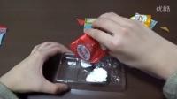 『遊べるお菓子』どうぶつグミ図鑑#1