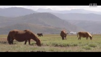 圣地高原·最美天籁《等你在花开的普达措》成林江措 藏歌·民歌·草原歌曲·天籁之音