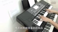 南山南 电子琴演奏 - 符正校