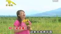 卓依婷 - 迎春花