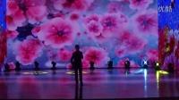 第二届无为金声颁奖盛典——男声独唱:《牡丹之歌》