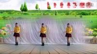 开心快乐广场舞2015年最新【DJ草原嗨歌】编舞青儿
