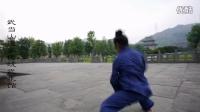 武当功夫三丰派传人蔡召武武术视频-武当玄武拳