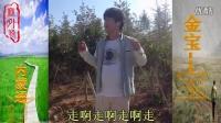 《流浪歌》——内蒙通辽 金宝(宝哥)