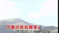 《绿叶对根的情意》(KTV歌曲卡拉OK字幕)