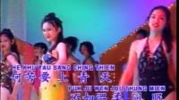 《新鸳鸯蝴蝶梦》KTV歌曲卡拉OK字幕