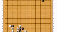 老刘围棋系列讲座之《老刘说恶手》常见大恶手
