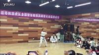 值得一看的 韩国虎队 K-Tigers 品势 龙英内部培训 跆拳道品势 平原
