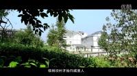 核桃坝小康村创建经验