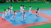 跆拳道舞 跆舞 表演秀 태권체조