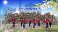 六安海心沙广场舞-山花朵朵开 编舞:起舞弄清影  团队正面