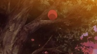 吸血鬼骑士[03]