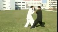 张志俊陈式太极拳32摔法
