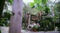 【纯翠园】一个园林式餐厅——时川出品