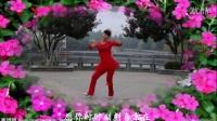 广场舞《红包》2015最新广场舞蹈视频大全教学完整版[火凤凰舞蹈队]
