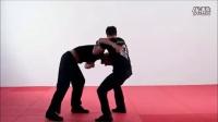 现代武术搏击之防身术教程 (4)