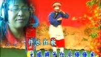 太谷秧歌 卖元宵  演唱张海英