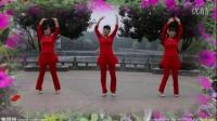 广场舞越看你越美2015最新广场舞蹈视频大全正反面字幕教学完整版[火凤凰舞蹈队
