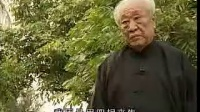 刘焕军太极断环掌技理技法