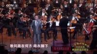 蒋大为《敢问路在何方》(时代楷模阎肃作品音乐会)民歌经典精选民歌中国