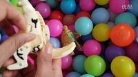 波波球里找/奇趣蛋、奥特蛋