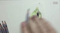 青蛙 立体绘画 写实  画画 王土土 原创 彩铅教学