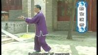 张东武 新架一路03DVD