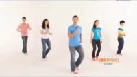 凤凰传奇 领舞    最炫民族风广场舞教学 分解动作
