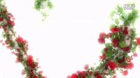 1633_ 唯美3D爱心玫瑰婚礼婚庆AE模板
