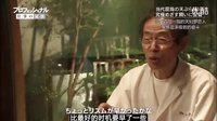 《天妇罗之神》早乙女哲哉(2012)DG東光电影 2016全国首译