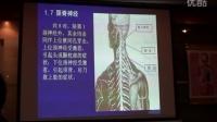 陈忠和整脊教程中医正骨针灸推拿视频教学3集