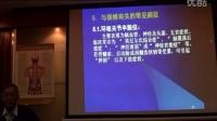 陈忠和整脊教程中医正骨针灸推拿视频教学7集