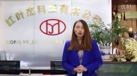 2015年红叶硅胶销售精英业绩达成分享