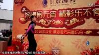 元宵节盈丰综合市场活动-景海湾2016-02-20周六
