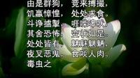 妙法莲华经 (读诵)(卷第2)