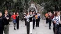 江城舞王再教三步踩基本步(张文斌杨茜金银铜金牌套路讲解和金银铜表演