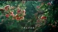 阿夏组合《我的索玛花》