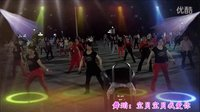 宝贝宝贝我爱你【明星版】——调兵山最魅力团队——炫舞骄阳广场舞(2015.8.29)