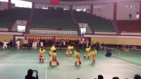 绍兴市第十届老年人运动会新昌代表隊集体太极拳