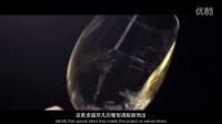 麦德龙2016年度精选葡萄酒——Cavanza