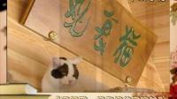 观复猫走进《书香北京》节目预告