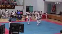 跆拳道品势比赛 【金刚 - 平原】