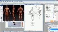 《人体系列 第一弹人体学说》名动漫原画插画教学