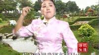 河南坠子 王莽赶刘秀(莫红梅)04