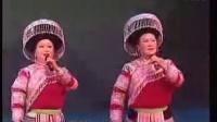 2009文山苗族新春文艺苗族歌曲木叶相思