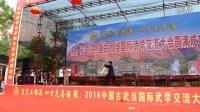 古武当国际武学交流大会太极小名家刘文杰