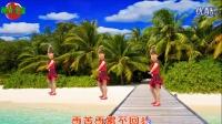 广场舞--闯码头--风度翩翩视频剪辑_201606231128