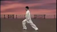 24式太极拳陈思坦完整教程 标清